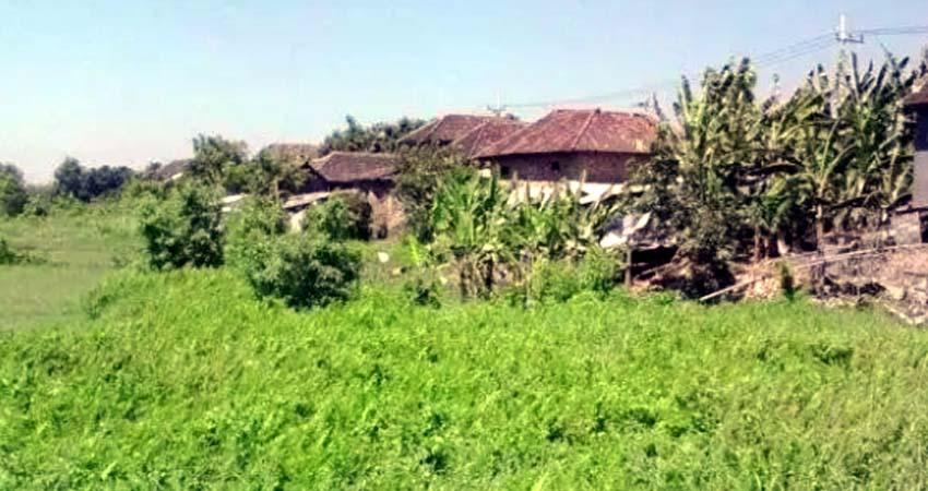 Ratusan Rumah Warga Kedungringin Pasuruan Terancam Digusur